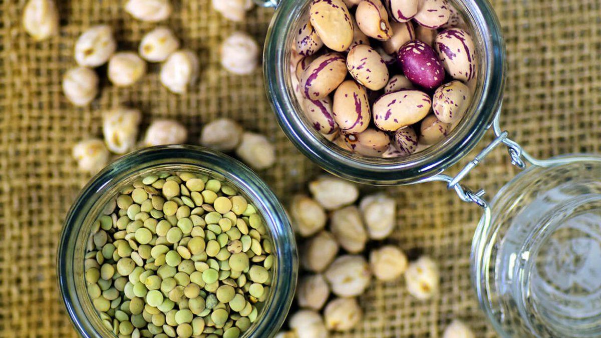 Warum Machs Vegan dir die Suche nach veganen Lebensmitteln erleichtert
